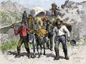 Prospectors Looking for New Diggings during the Gold Rush, c.1850