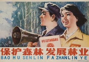 Protect the Forest, Chinese Cultural Revolution