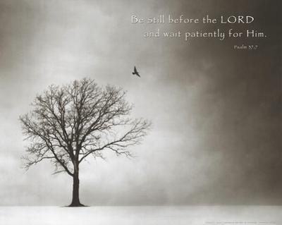 Psalm 37 Be Still Before the Lord Art Poster Print