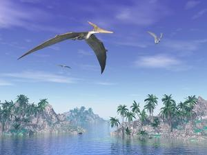Pteranodon Birds Flying Above Islands with Palm Trees