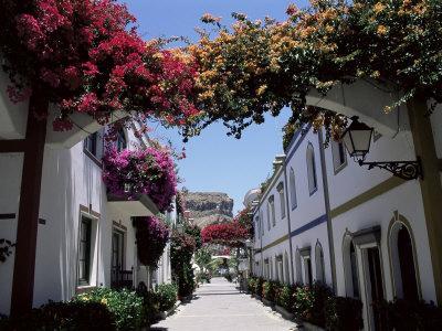https://imgc.allpostersimages.com/img/posters/puerto-de-mogan-gran-canaria-canary-islands-spain_u-L-P1JQDB0.jpg?p=0
