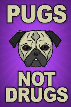 Pugs Not Drugs Humor Plastic Sign