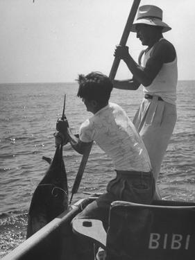 Pulling Quickly, the Beaten Fish Is Taken Aboard the Boat by Gloved Crew Member