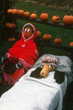 Pumpkin Scarecrow, Finger Lakes, New York