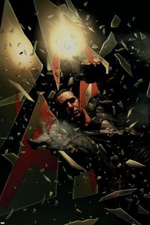 Punisher No.16 Cover: Punisher Smashing