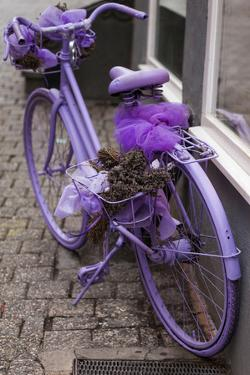 Purple bicycle on street, Limburg an der Lahn, Hesse, Germany