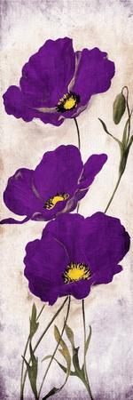 https://imgc.allpostersimages.com/img/posters/purple-look-mate_u-L-Q1HRAAT0.jpg?artPerspective=n