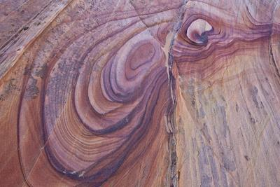 https://imgc.allpostersimages.com/img/posters/purple-loops-in-sandstone-coyote-buttes-wilderness-vermilion-cliffs-national-monument_u-L-PWFFJJ0.jpg?p=0