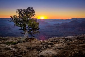 Grand Canyon National Park Arizona by pxhidalgo