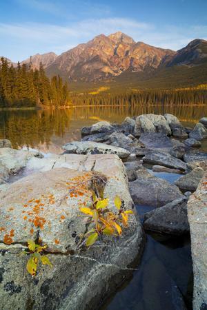 https://imgc.allpostersimages.com/img/posters/pyramid-mountain-and-pyramid-lake-jasper-national-park-alberta-rocky-mountains-canada_u-L-PWFH710.jpg?p=0