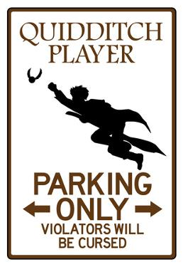 Quidditch Player Parking Sign