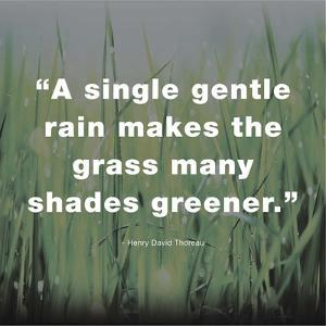 A Single Gentle Rain - Henry Thoreau Quote (Dark) by Quote Master