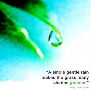 A Single Gentle Rain - Henry Thoreau Quote (Droplet) by Quote Master