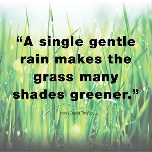 A Single Gentle Rain - Henry Thoreau Quote (Light) by Quote Master