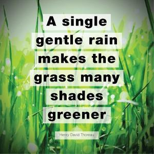 A Single Gentle Rain - Henry Thoreau Quote (Vibrant) by Quote Master