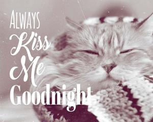 Always Kiss Me Goodnight Sleepy Cat by Quote Master