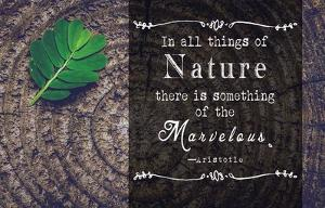 In all things of Nature by Quote Master