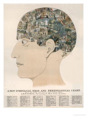 Phrenological Head by R^b^d^ Wells