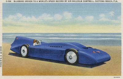 The Bluebird 5 by R.H. Le Sesne