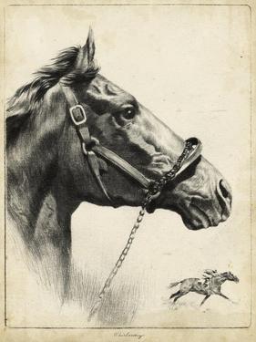Whirlaway by R.H. Palenske