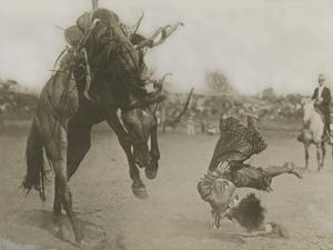 A Rider Topples Off His Horse During a Rodeo by R.R. Doubleday