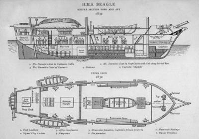 Hms Beagle Charles Darwin's Research Ship by R.t. Pritchett