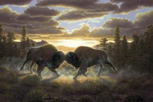 Buffalo by R.W. Hedge