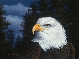 The Face of Freedom by R.W. Hedge