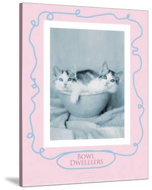 Bowl Dwellers by Rachael Hale