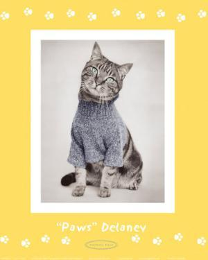 Paws Delaney by Rachael Hale