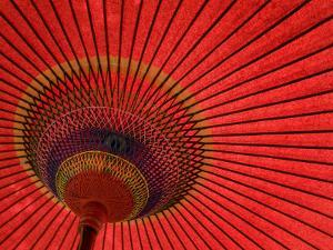 Traditional Red Japanese Paper Umbrella by Rachel Lewis
