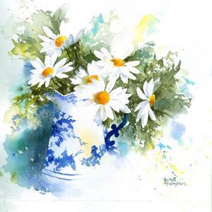 Daisies by Rachel McNaughton