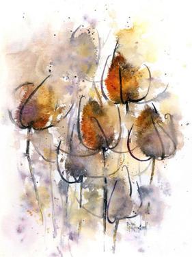 Teasels by Rachel McNaughton