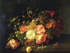 Flowers and Insects, 1711 by Rachel Ruysch