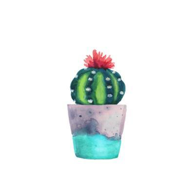 Watercolor Succulent in a Flowerpot. Isolated on a White Background. Handdrawn Green Succulent in P by radionastya