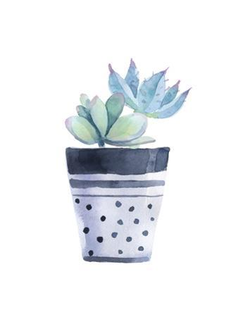 Watercolor Succulent in a Flowerpot. Isolated on a White Background. by radionastya