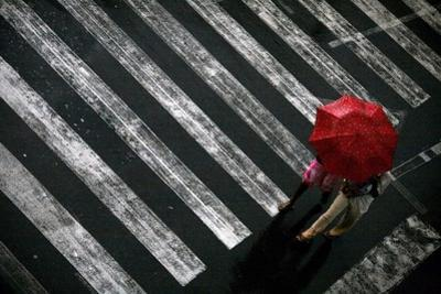 Couple Crosses Street under Red Umbrella as Heavy Rain Pours During Presidential Elections