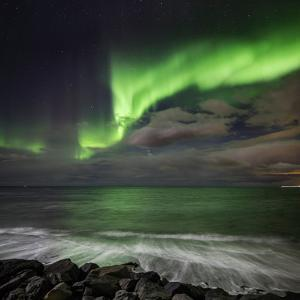 Aurora Borealis or Northern Lights, Seltjarnarnes, Reykjavik, Iceland by Ragnar Th Sigurdsson
