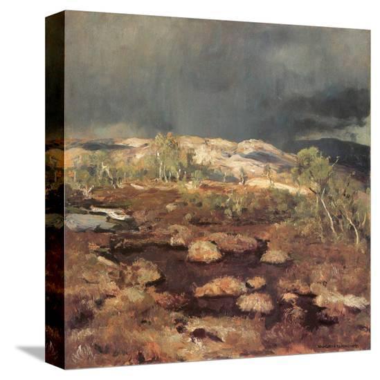 Rain Shower in a Bog in Norway-Eugen Bracht-Stretched Canvas