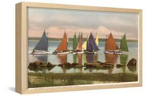 Rainbow Fleet, Nantucket, Massachusetts