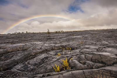 https://imgc.allpostersimages.com/img/posters/rainbow-over-old-lava-field-hawaii-volcanoes-np-hawaii-usa_u-L-PN6RBJ0.jpg?p=0