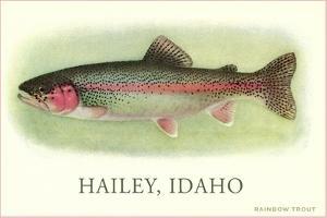 Rainbow Trout, Hailey