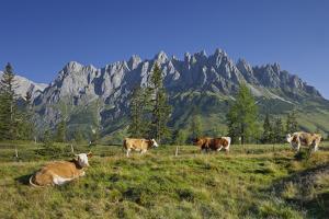 Austria, Salzburg, Mandlwand, Hochkšnig (Mountain) by Rainer Mirau
