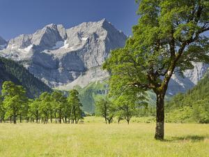 Austria, Tyrol, Karwendel (Mountain Range), Gro§er Ahornboden (Area), Spritzkarspitze (Peak by Rainer Mirau