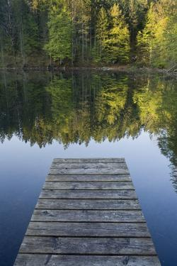 Austria, Upper Austria, Almtal (Valley), Gro§er …dsee (Lake), Totes Gebirge (Mountains by Rainer Mirau
