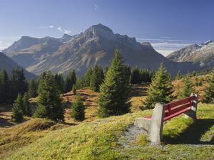 Austria, Vorarlberg (Region), Lechtal Alps, Omeshorn, Alpine Grassland, Bank by Rainer Mirau