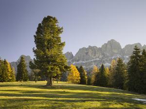 Autumnal Alp in Front of the Mountain Rosengarten, Kšlbleggiesen, South Tyrol by Rainer Mirau