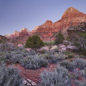 Bridge Mountain, Zion National Park, Utah, Usa by Rainer Mirau