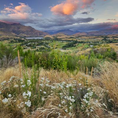 Feehly Hill Scenic Reserve, Arrowtown, Otago, South Island, New Zealand by Rainer Mirau