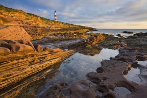 Great Britain, Scotland, Tarbat Ness, Lighthouse, Sea, Rock, Dusk by Rainer Mirau